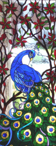 Stained Glass Peacock, by Chris Gonzalez